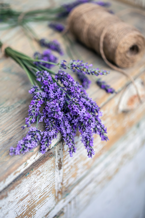 Understanding Naturopathic Medicine And How It Works | Naturopathic Dr