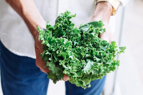 cropped-photo-of-person-holding-bunch-of-kale