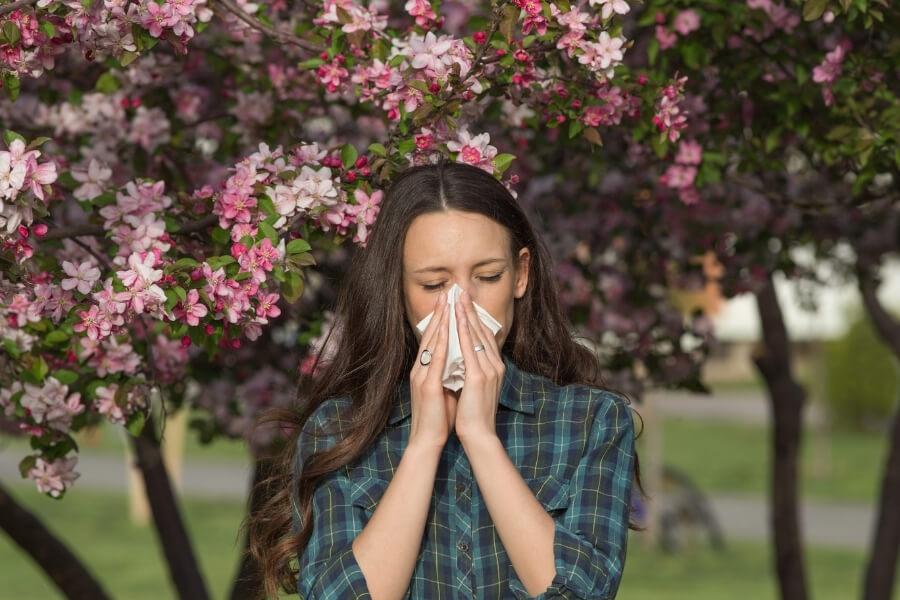 sneezing allergy symptoms