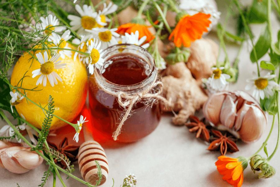 Herbal Remedies to treat uterine fibroids