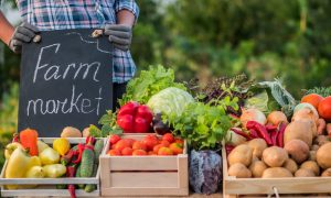 Bins of fresh produce are a small sample of what you can find at a farmers market.