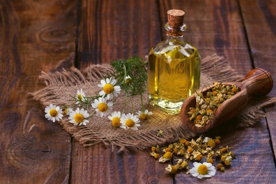 Chamomile Essential Oils for headaches