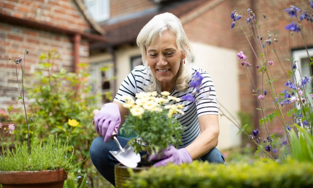 A senior woman plants flowers in a pot to enjoy the health benefits of gardening.